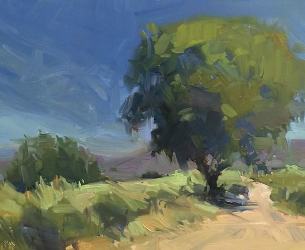 """Sant'Antimo Shady Parking Spot"" original fine art by Patti McNutt"