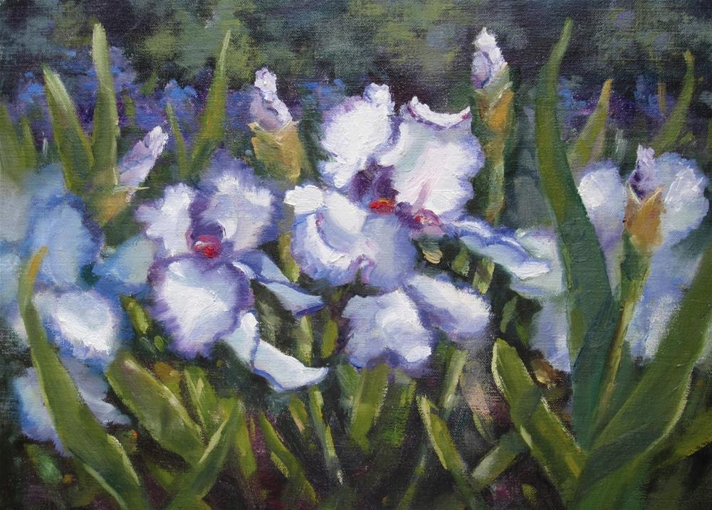 """Commissioned Painting  - Iris Garden"" original fine art by Pat Fiorello"