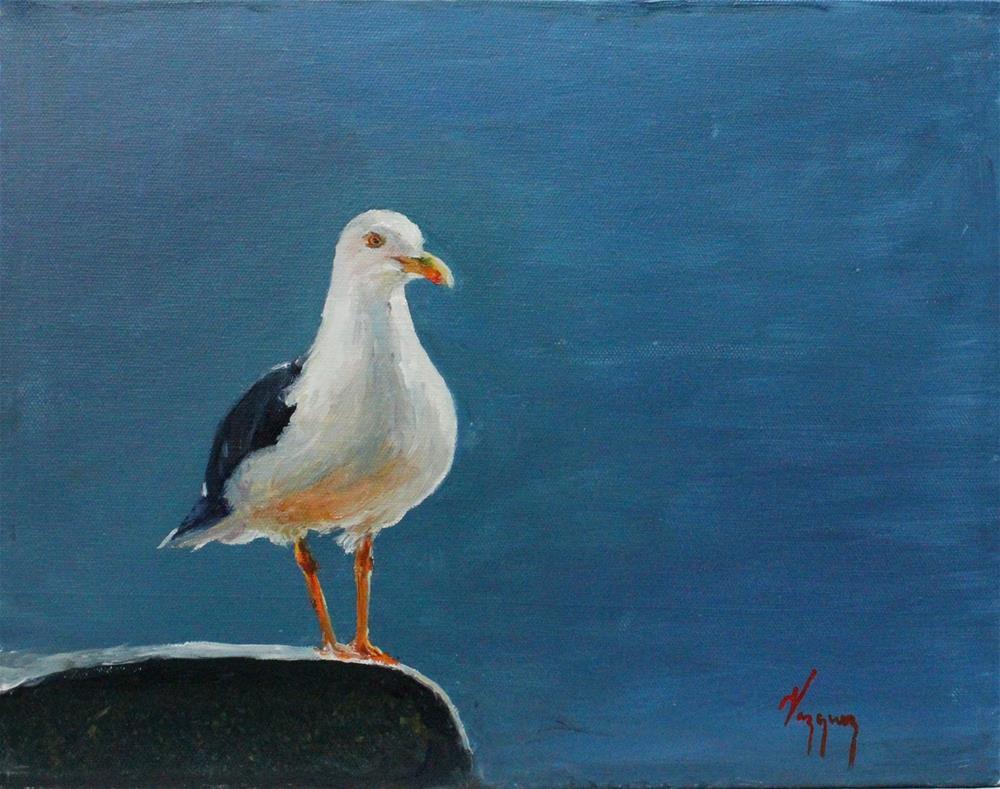 """seagull standing"" original fine art by Marco Vazquez"