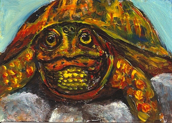 """ACEO Mr. T, an Eastern Box Turtle Acrylic Painting by Penny Lee StewArt"" original fine art by Penny Lee StewArt"