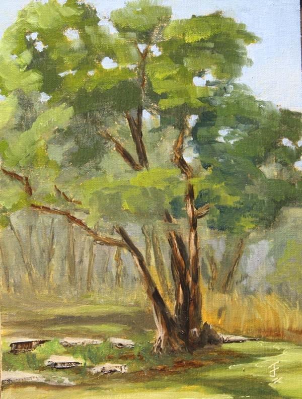 """Ode to a Tree"" original fine art by Jane Frederick"