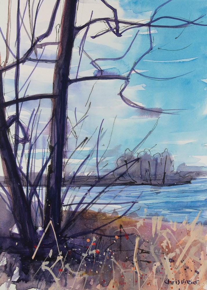 """Waiting for Winter"" original fine art by Chris Breier"