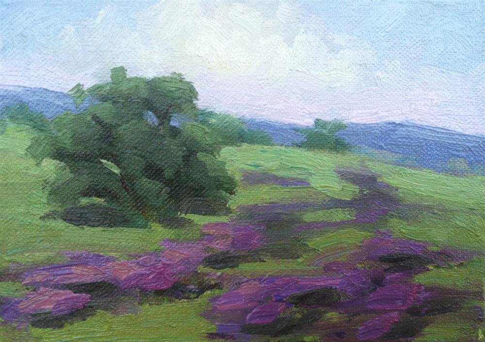 """Blue Morning Lupines"" original fine art by Mary Mulvihill"
