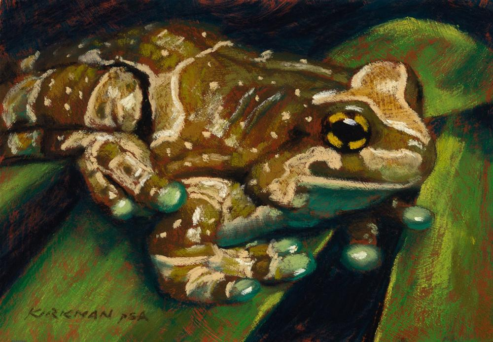"""Frog #12 (All Dressed Up)"" original fine art by Rita Kirkman"