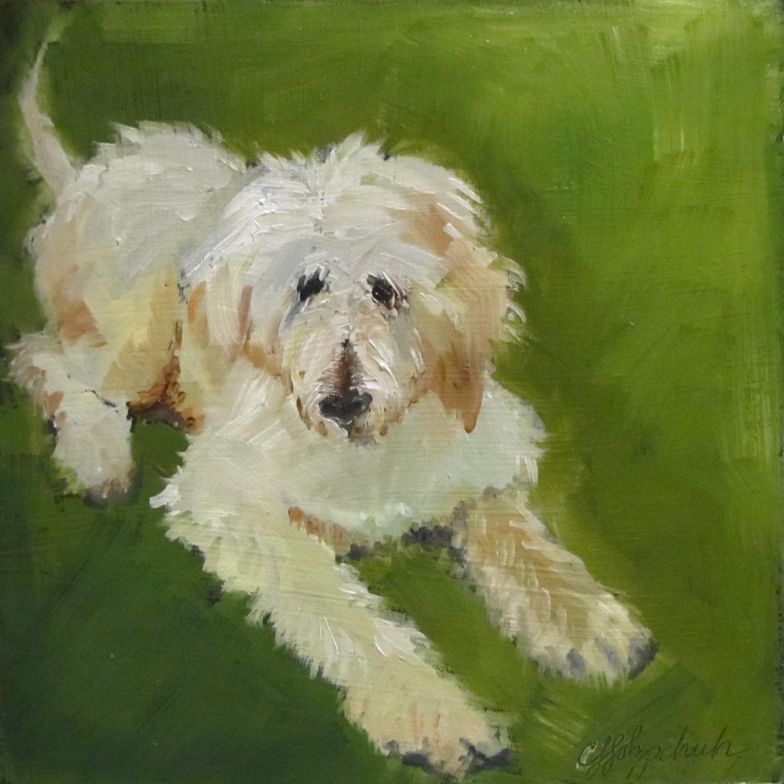 """Toby 1   oil 6x6    animal portrait  #364"" original fine art by Christine Holzschuh"