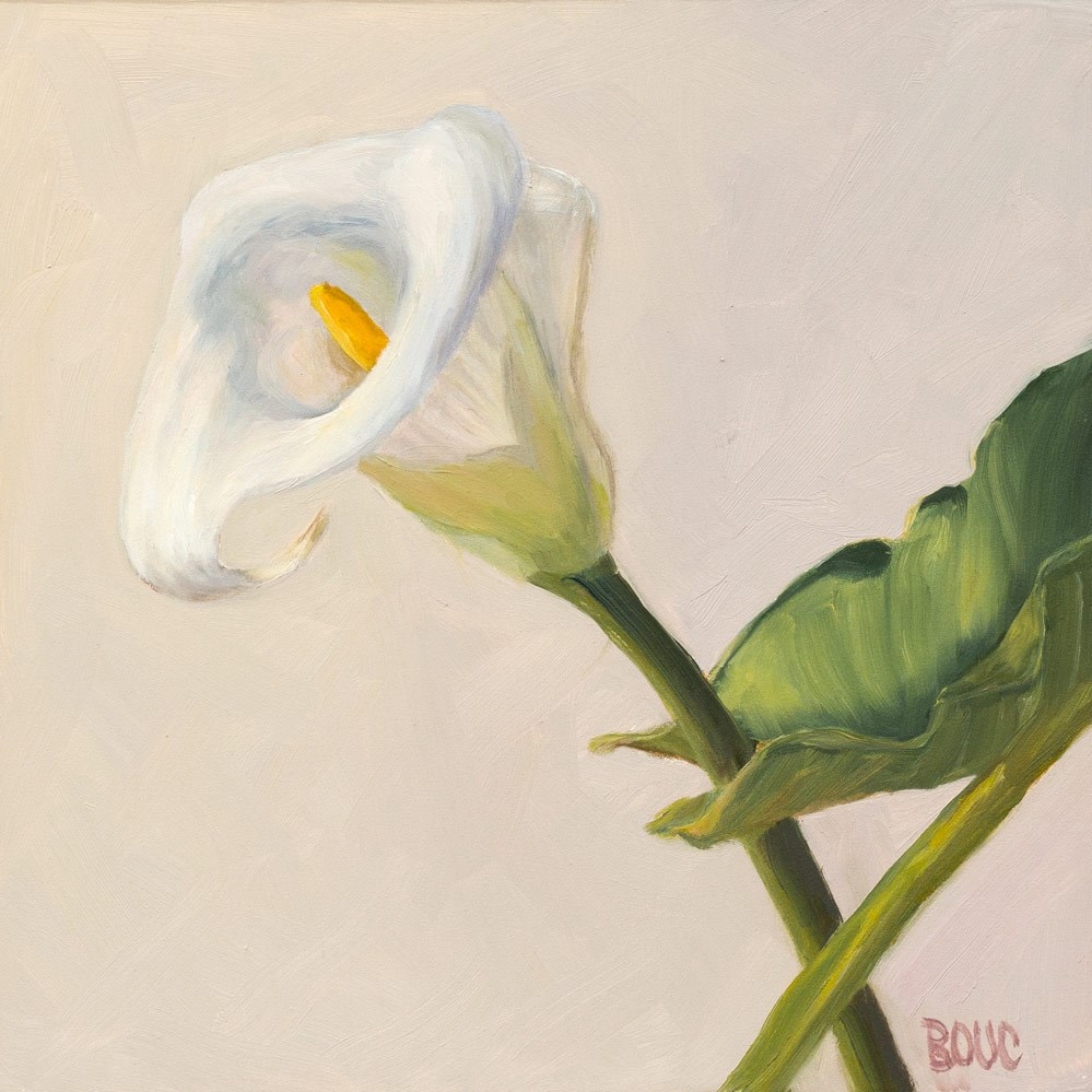 """Calla Lilly on White"" original fine art by Jana Bouc"