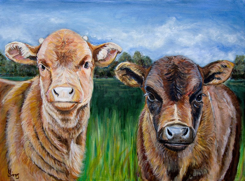 """Two Baby Cows"" original fine art by Heather Sims"