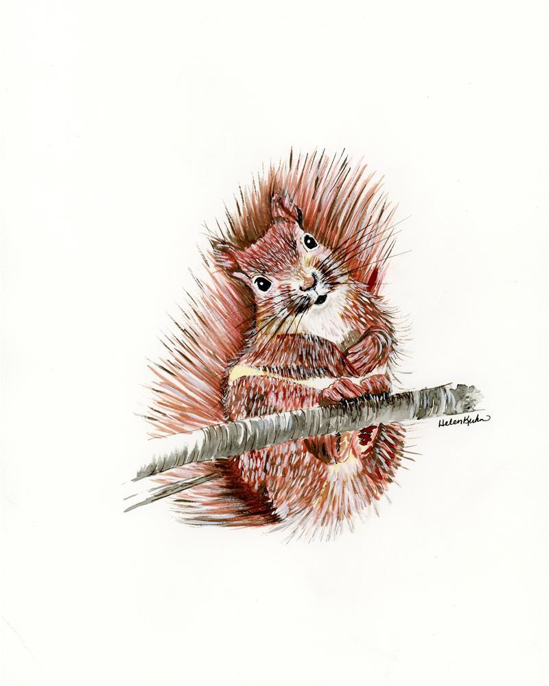 """""""Squirmy Squirrel"""" original fine art by Helen Kuhn"""