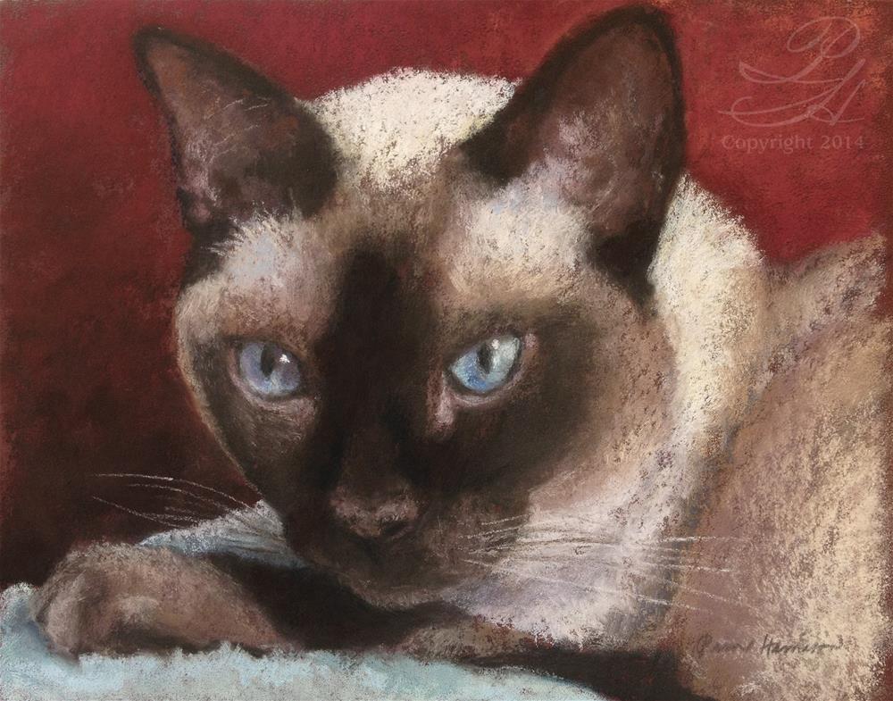 """Soulful Eyes"" original fine art by Pamela Hamilton"
