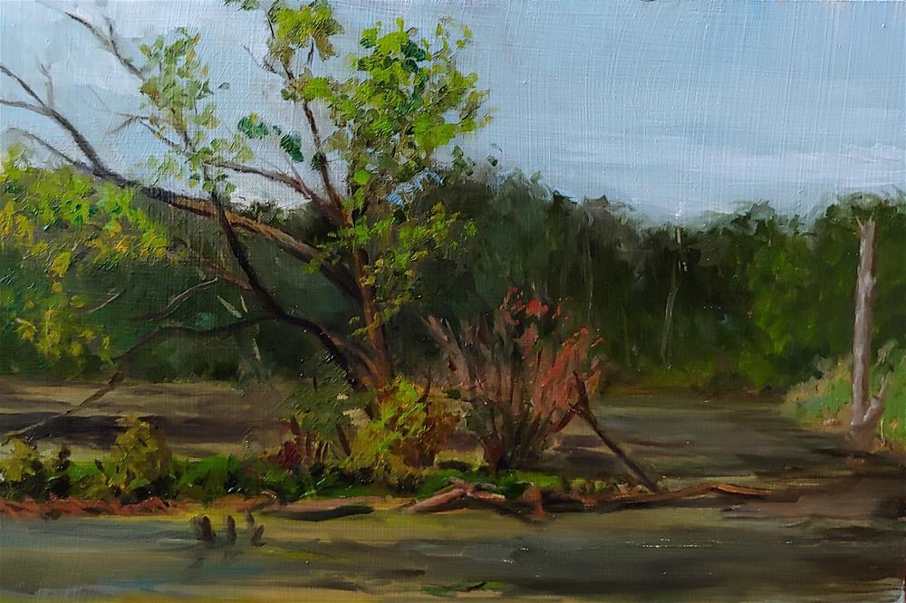 """Lake Zurich Pond Study"" original fine art by Edward Watson"