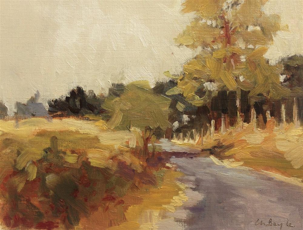 """""""Countryside road in sunset"""" original fine art by Christine Bayle"""