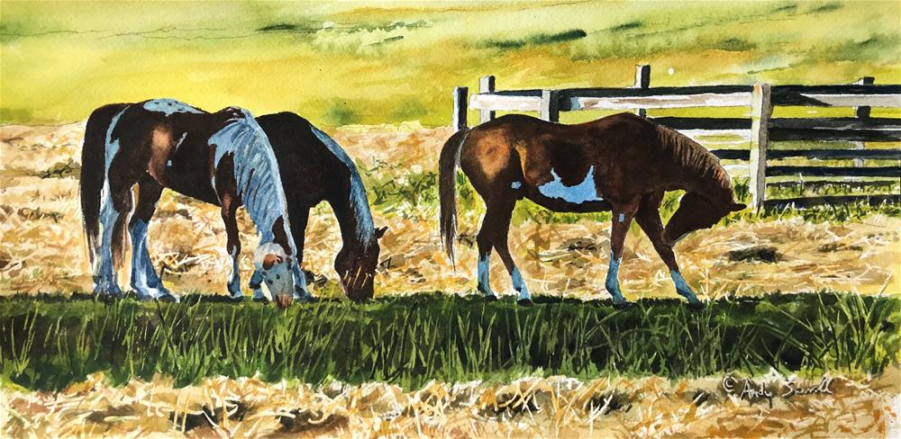 """""""Fresh Hay"""" original fine art by Andy Sewell"""
