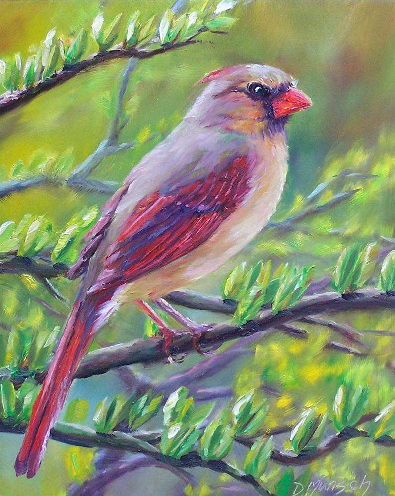 """""""Female Cardinal"""" original fine art by Donna Munsch"""