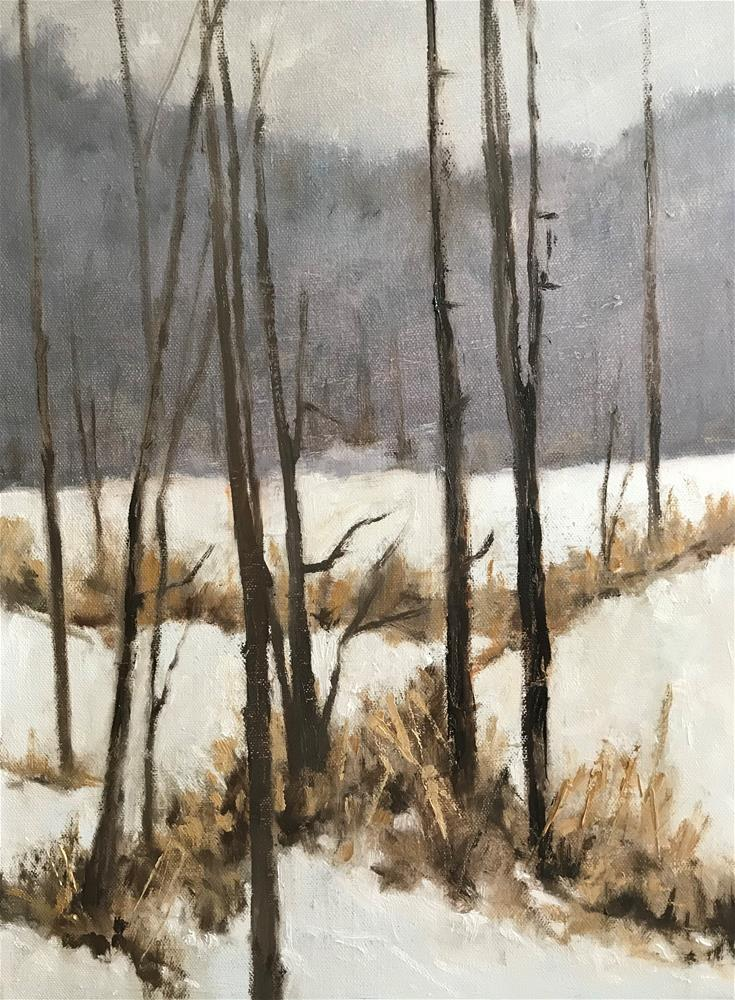 """snowy back yard"" original fine art by Betty Argiros"