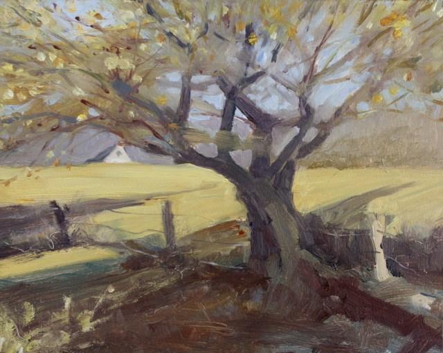 """The Old Apple Tree"" original fine art by Robin Weiss"