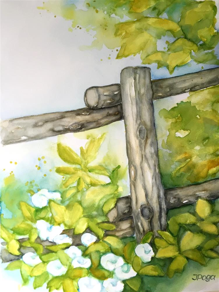 """Summer fence"" original fine art by Inese Poga"