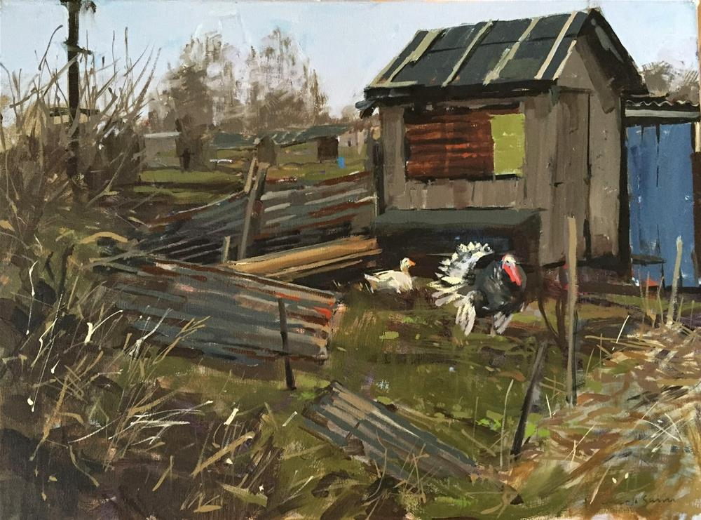 """""""Turkey at the allotments"""" original fine art by Haidee-Jo Summers ROI"""
