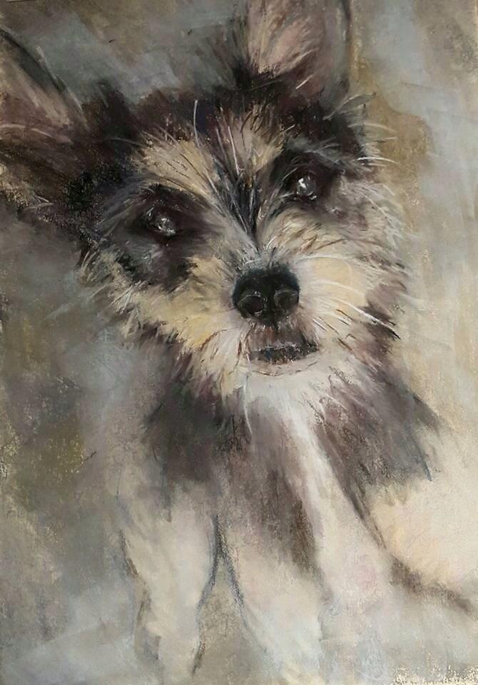 """""""Scruff love"""" original fine art by Rentia Coetzee"""