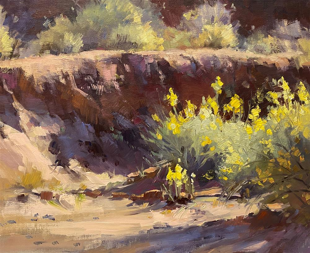 """""""Ghost Town Arroyo"""" original fine art by Mary Jabens"""