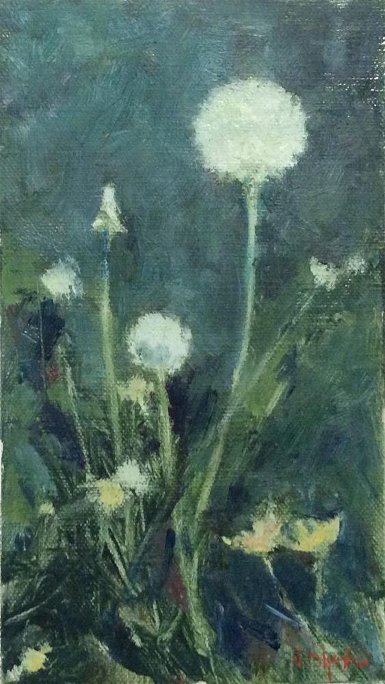 """Dandelion Puffballs"" original fine art by John Shave"
