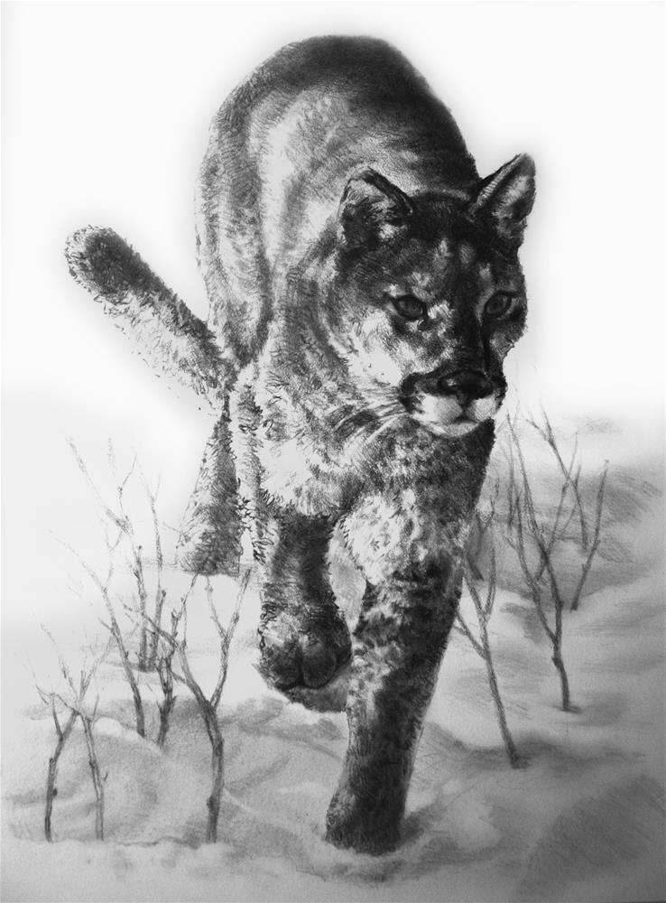 """Cougar in Winter"" original fine art by K.R. McCain"