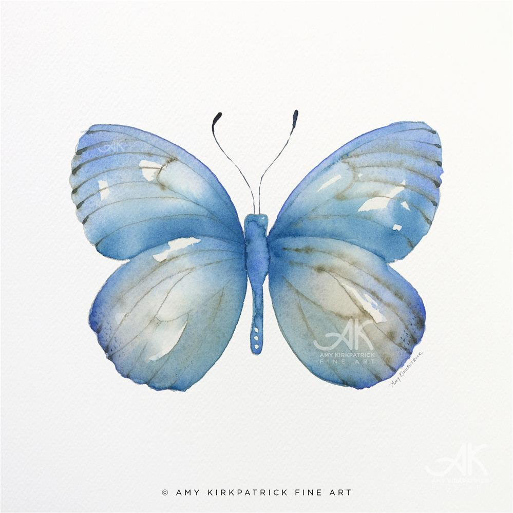 """#112 Blue Marcia Butterfly #0585"" original fine art by Amy Kirkpatrick"