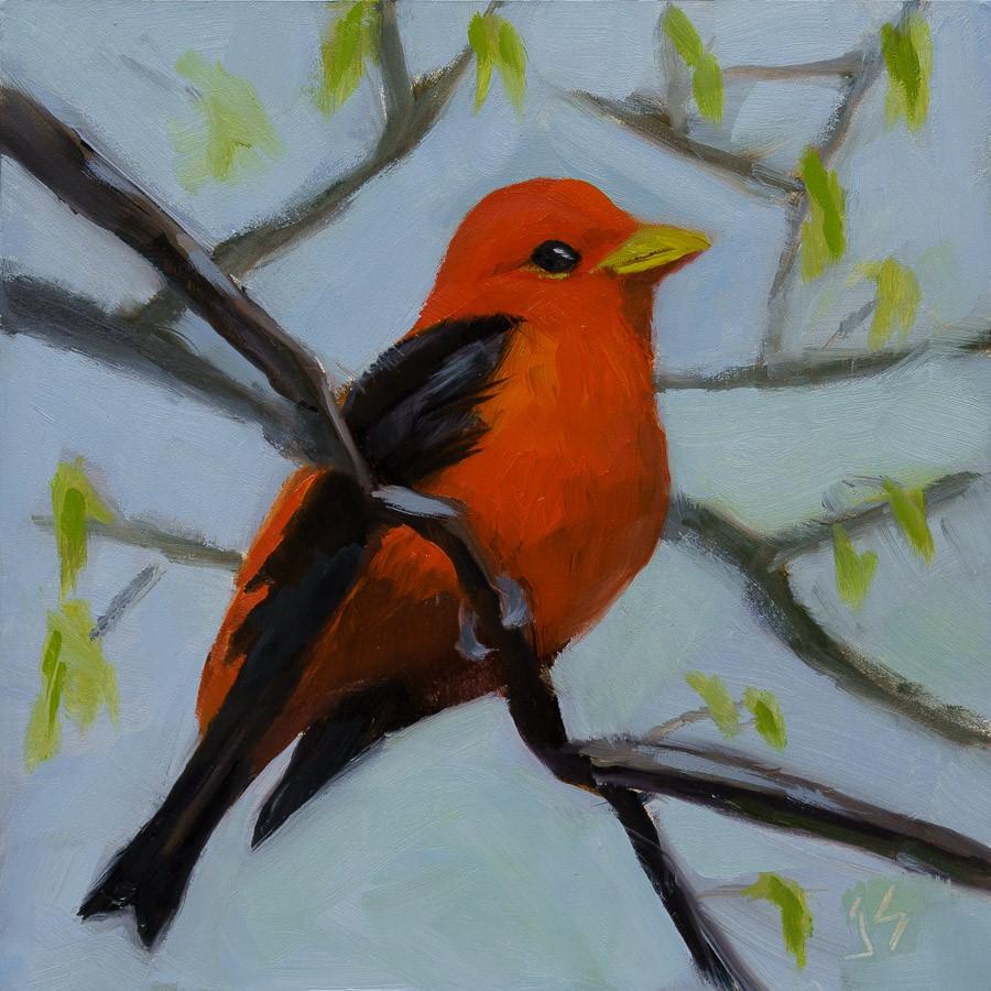 """""""Scarlet Tanager"""" original fine art by Johnna Schelling"""