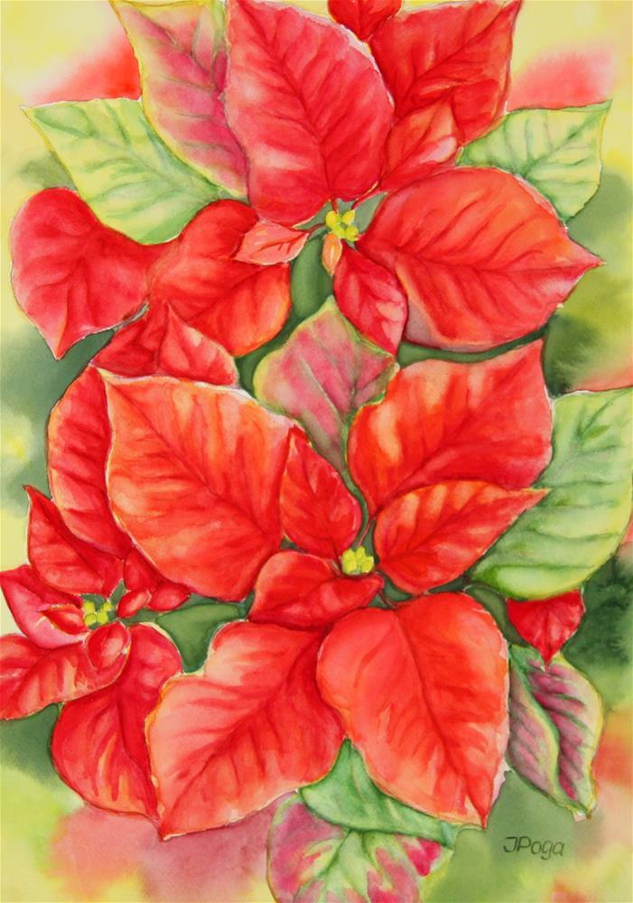 """Bright red poinsettia"" original fine art by Inese Poga"
