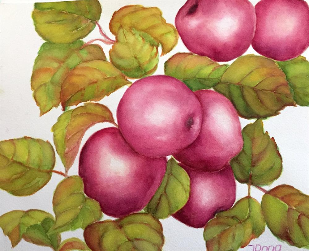 """Purple variety"" original fine art by Inese Poga"