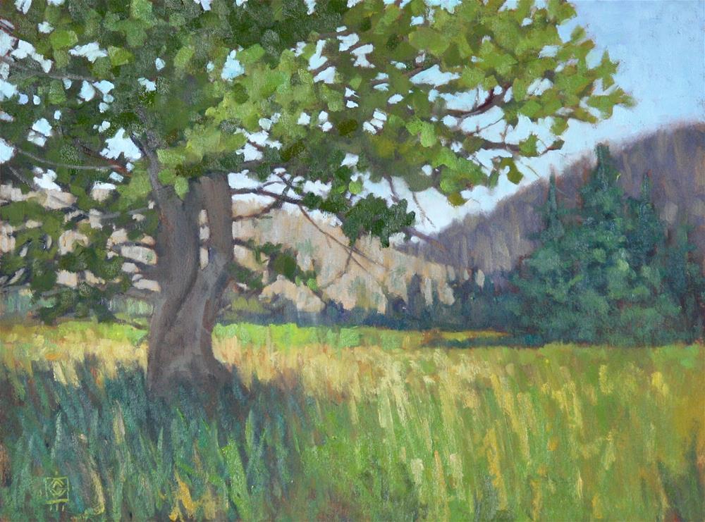 """Picnic Spot"" original fine art by Carol Granger"
