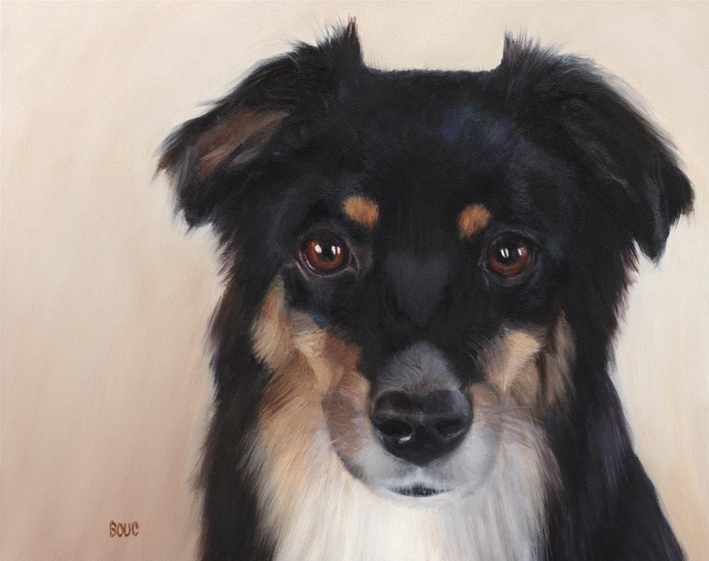 """Whiskey: A Mini-Aussie Dog Portrait"" original fine art by Jana Bouc"