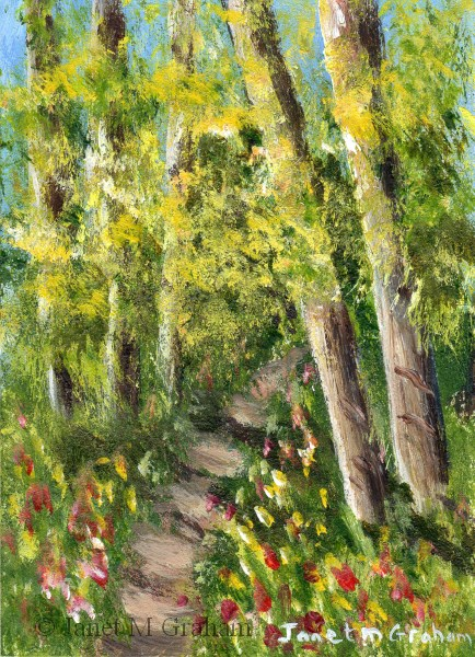 """Woodland Trail ACEO"" original fine art by Janet Graham"