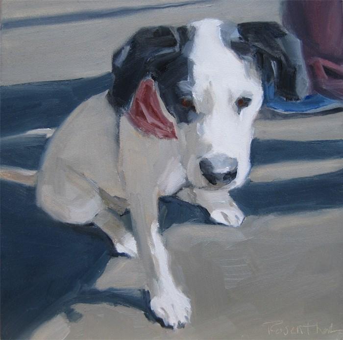"""Black & White Pup"" original fine art by Robin Rosenthal"