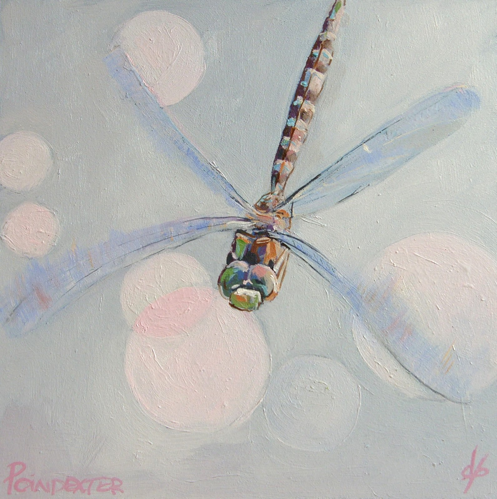 """Study of Dragonfly"" original fine art by Dianna Poindexter"