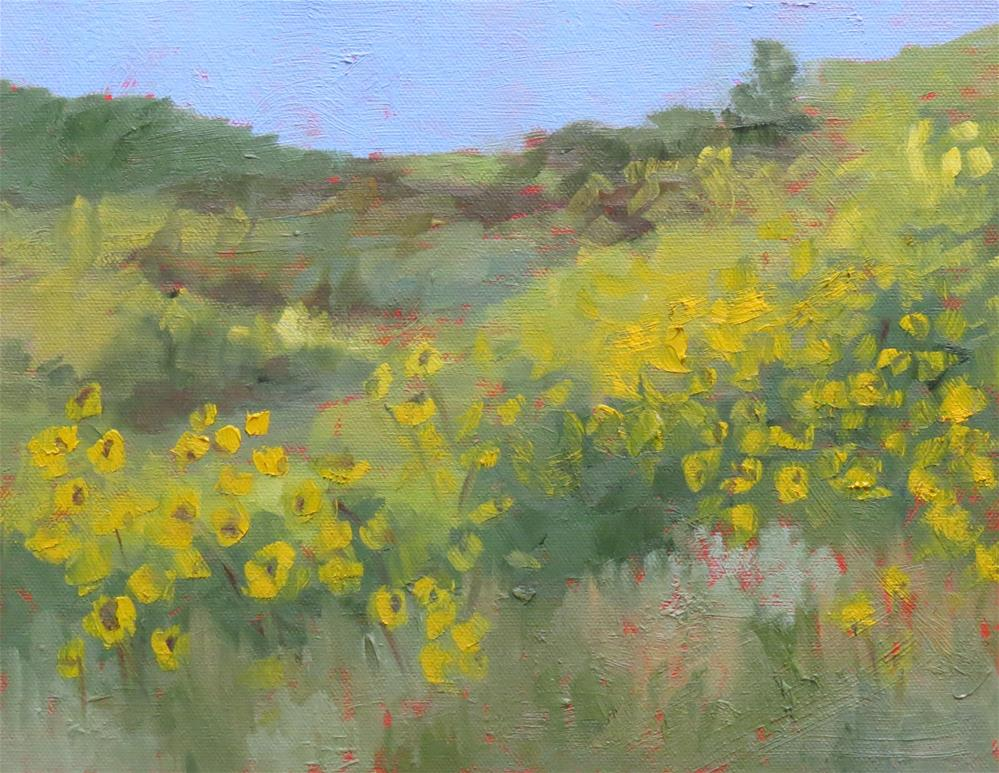 """Blaze Of Yellow"" original fine art by Pam Holnback"