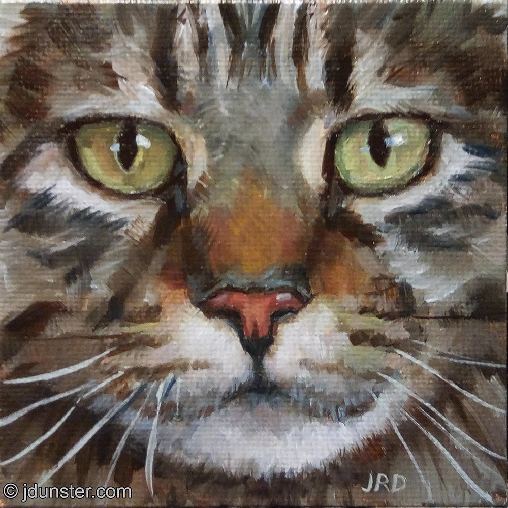 """Tabby Face"" original fine art by J. Dunster"