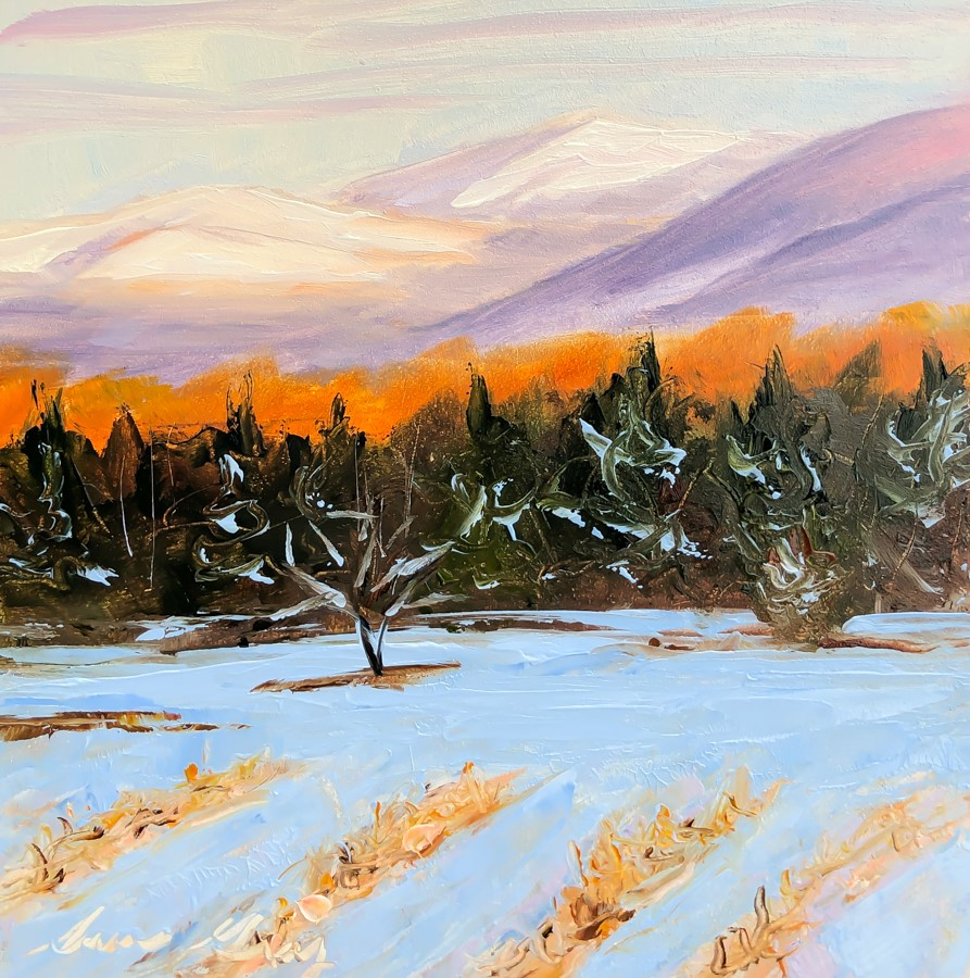 """#182 - Put to Bed for the Winter - Stowe, VT"" original fine art by Sara Gray"