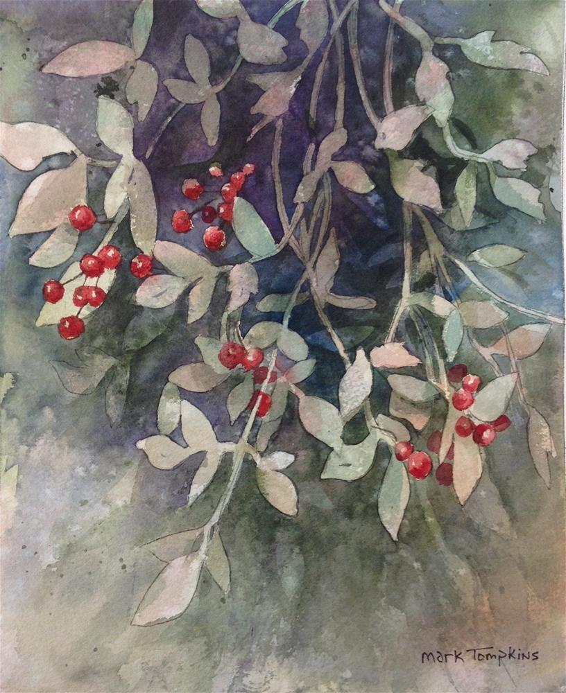 """Berries on the Vines"" original fine art by Mark Tompkins"