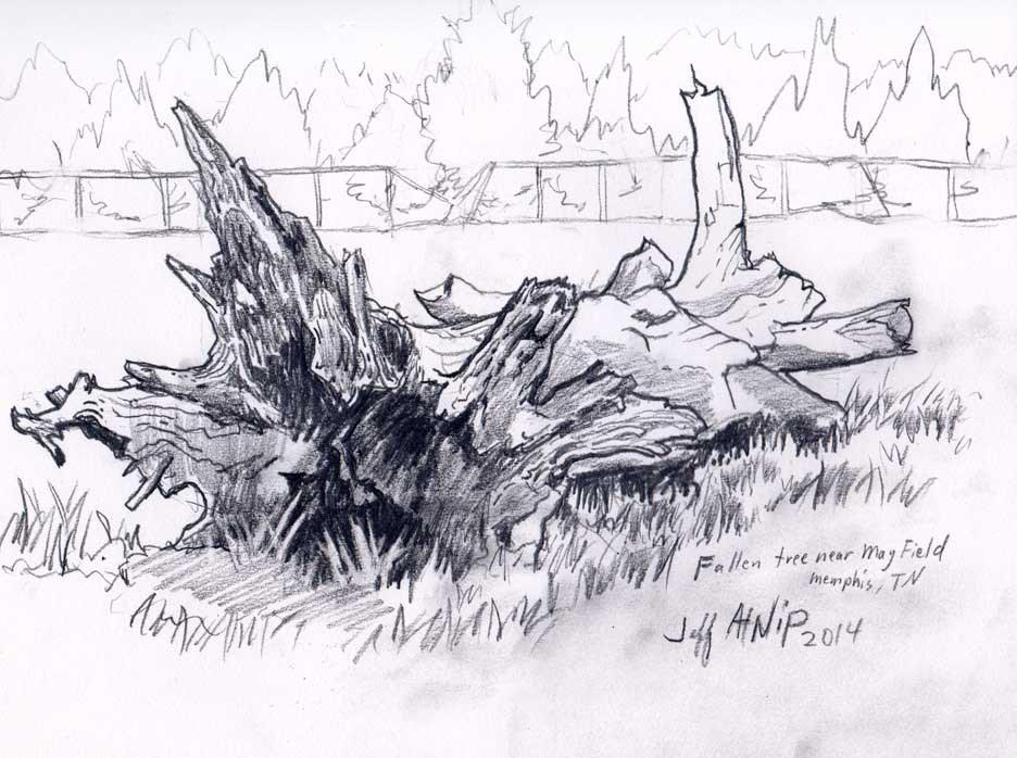 """""""Fallen Tree"""" original fine art by Jeff Atnip"""