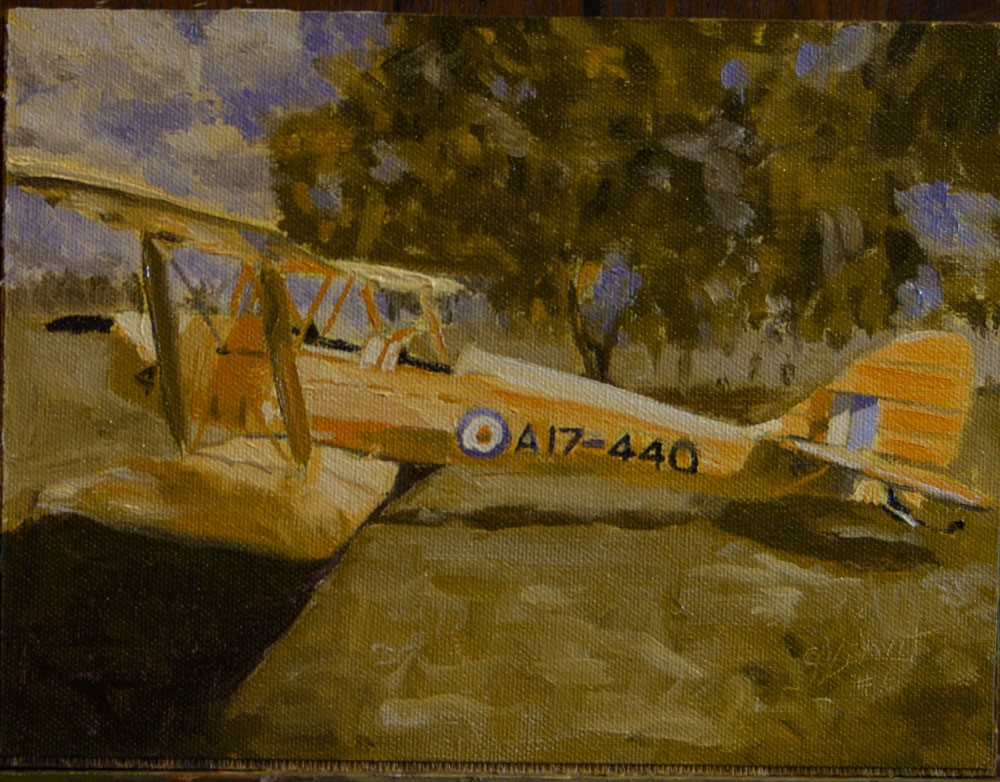 """Tiger Moth Study #6 in YellowOrange / BlueViolet"" original fine art by Garry Kravit"