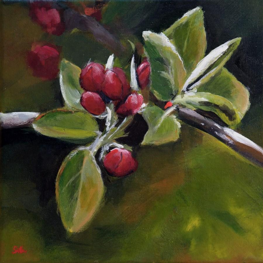 """""""1347 Apple Blossoms"""" original fine art by Dietmar Stiller"""