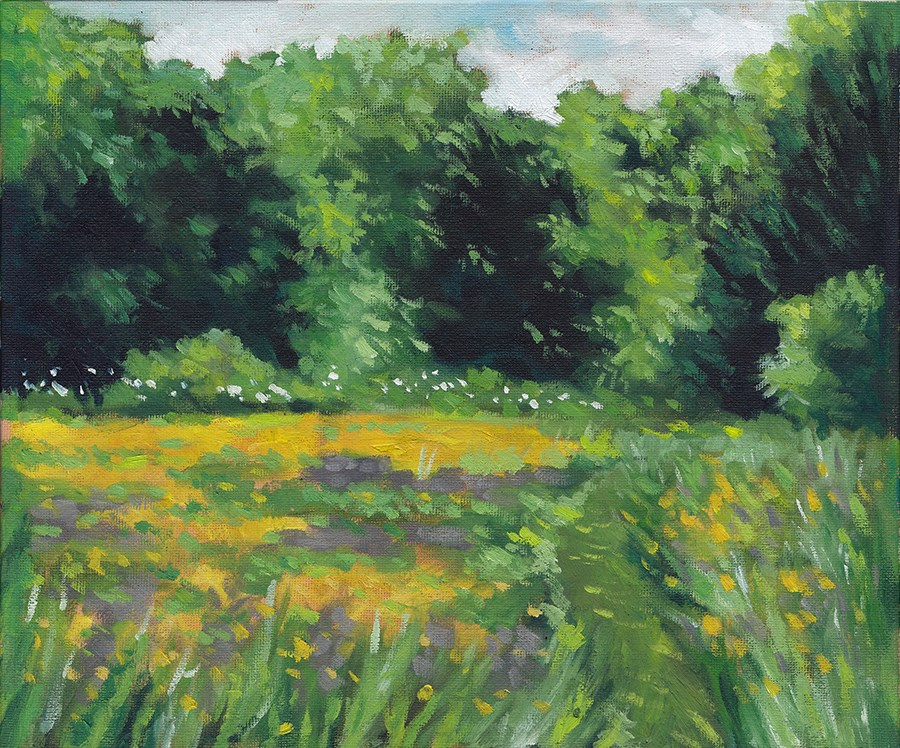 """The Meadow, June"" original fine art by J M Needham"
