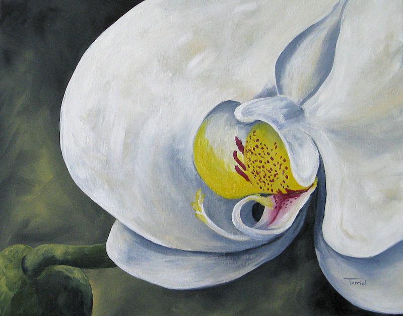 """Orchid for Amanda"" original fine art by Torrie Smiley"