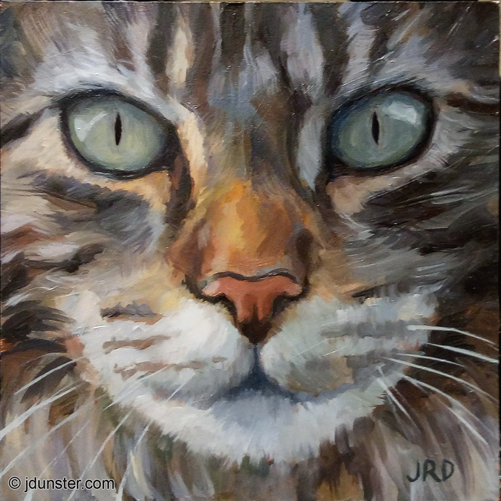 """ZORN MAINE COON"" original fine art by J. Dunster"
