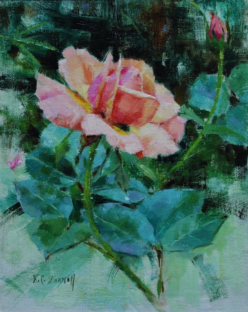 """Peach Rose"" original fine art by Donna C Farrell"