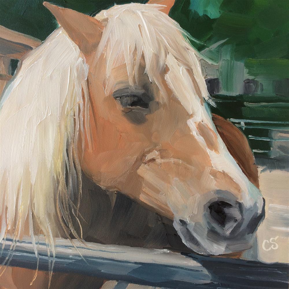 """Mercedes "" original fine art by Carol Stickley"