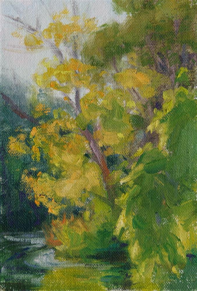 """Backlit Trees 6.25 x 4.25"" original fine art by Sharon Will"