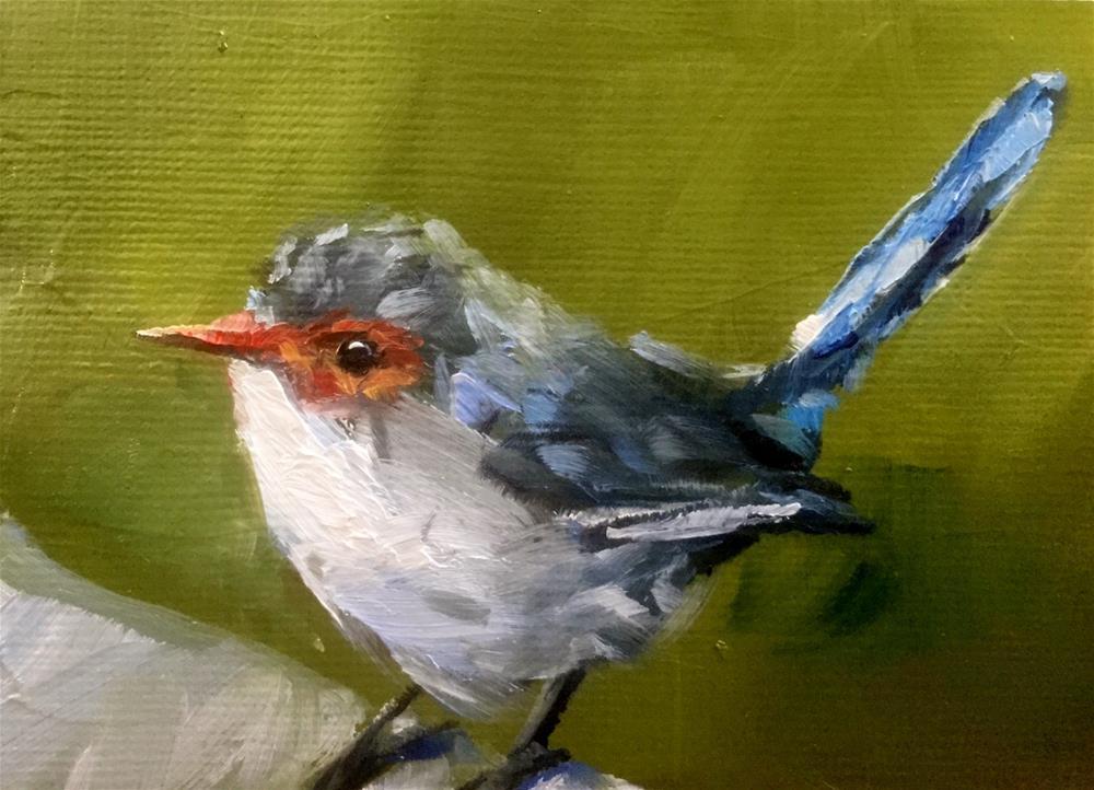 """Female Fairy Wren"" original fine art by Gary Bruton"