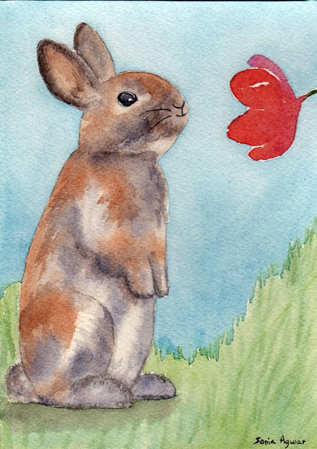 """Watership Rabbit"" original fine art by Sonia Aguiar"