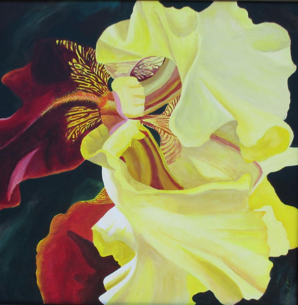 """""""JJ's Iris"""" original fine art by Lisa Wiertel"""